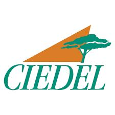 CIEDEL Logo